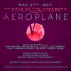 fridays-aeroplane-5-27-11-back